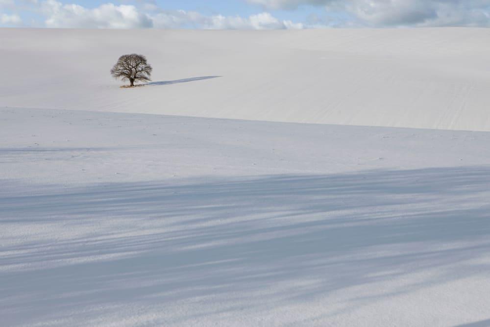 Najniža temperatura u prirodi